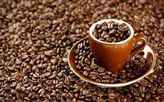 Chocolate Hazelnut Regular Flavored Bulk Coffee Arabica Beans - 1 to 5 Pound Bags Too Much Coffee, I Love Coffee, Fresh Coffee, Coffee Talk, Black Coffee, Coffee Drinks, Coffee Cups, Coffee Corner, Chocolate Hazelnut