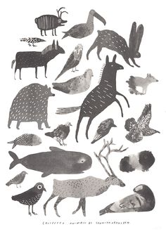 COLLECTED ANIMALS POSTER - Sunniva Krogseth