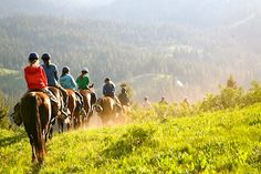Learn more about our 2015 Yellowstone Horseback Adventure www.alpengirlcamp.com
