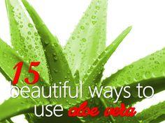 15 Beautiful Uses For Aloe Vera
