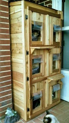 Outdoor cat shelter and like OMG! get some yourself some pawtastic adorable cat apparel! Feral Cat House, Feral Cat Shelter, Cat House Diy, Feral Cats, Cat Shelters, Pet Cats, Animal Shelter, Outside Cat House, Outside Cat Shelter
