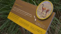 Comprehensive signage and graphics program. Zoo Signage, Signage Board, Wayfinding Signage, Signage Design, Santa Ana, Aquarium Design, Science And Nature, Animals And Pets, Wildlife