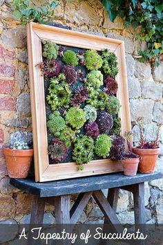 fascinating succulent wall decor turn succulents into living wall art with this picture frame projects also known decor steals bread box