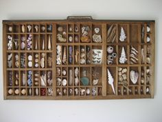 Shell Printers Tray by MyGreenGazebo on Etsy