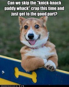Give the dog a bone!