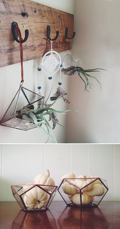 Glass Terrariums from ABJ Glassworks - clever to hang from coat hooks.