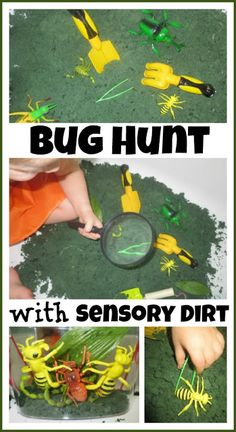 Bug Hunt-Sensory Fun