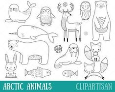Animals of the Alphabet Clipart Bundle Arctic Animals, Baby Animals, Penguin Animals, Tier Doodles, Bebe Love, Animal Doodles, Black And White Lines, Zentangle, Snowy Owl