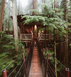 This #treehouse in Vancouver British Columbia has got my heart beating. : @remybrand #treehouseclub by treehouseclub_