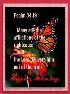 Psalm 34 19, Divine Mercy, Blessings, Good Morning, Bible Verses, Blessed, Sunday, Lord, Thoughts