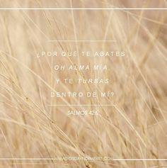 Devocional Viernes semana 1  #AmaaDiosgrandemente #Mujersabia #Probervios #Estudiobiblicoenlinea #ADGenespañol #Dios #Devocionalparamujeres