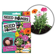 Seed Bombs Throw and Grow Plants from ThinkGeek |   With the Cut Flower Mixture you can grow a random mix of: Baby's Breath, Purple Cornflower, Zinnia Pumila Mix, Cosmos Sensation Mix, Spider Plant, French Marigold, Dwarf Spurred Snapdragon, Corn Poppy, and Black Eyed Susan. ThinkGeek also have two other seed bombs Wild Bird Mixture and Shade Flowers Mixture.