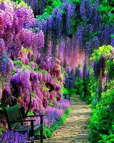 The Wisteria Tunnel at Kawachi Fuji Gardens, Kitakyushu, Japan - Natural Wonders Around the World You'll Have to See to Believe - Photos Garden Types, Beautiful Landscapes, Beautiful Gardens, Beautiful Places, Beautiful Pictures, Beautiful Scenery, Wonderful Places, Beautiful Tree Houses, Beautiful Days