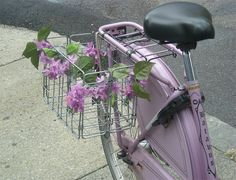 Batavus, Wisteria by Lovely Bicycle!, via Flickr