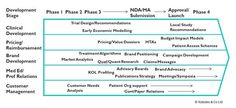 An overview of the successful components around ensuring market access when launching a new pharma drug.