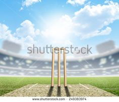 Cricket Stock Photos, Images, & Pictures | Shutterstock