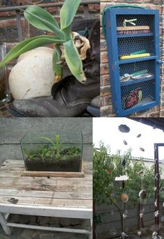 some ideas from the garden