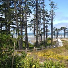 The Shingled Beach Cottages In Seabrook Washington Make For A Salty Getaway Bliss Living