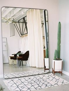 Oversized wall mirror, a cactus, and a Moroccan rug.