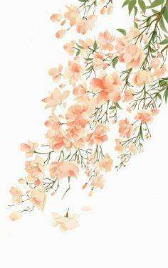 flower drawing wallpaper Hand Painted The varicolored world plant vegetation illustration Flower Wallpaper, Pattern Wallpaper, Wallpaper Backgrounds, Drawing Wallpaper, Trendy Wallpaper, Pink Wallpaper, Phone Backgrounds, Art Floral, Aesthetic Iphone Wallpaper