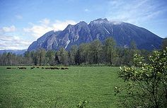 Mt. Si in Washington State...my dad's favorite place. He spent many, many hours hiking the mountain....