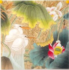 "Original mounted Asian Chinese watercolor painting egrets birds in lotus pond a51. 1. Size: 65cm x 65cm (25.5"" x 25.5""). 2.100% hand painted on rice paper with brush, ink, and watercolor. And hand mounted with thick paper, ready to frame. There is no frame in the photo. 3. Nice decoration for your bedroom, dining room, entryway, kitchen, living room, and office. Let you feel the beauty of the nature. 4. The calligraphy is the name of the painting and Chinese lunar calendar when it's…"