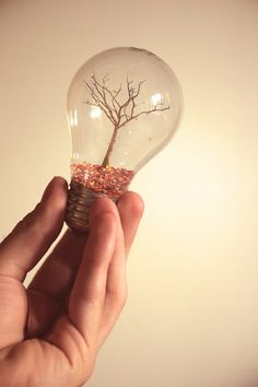 Tree in a light bulb. If I ever actually go through and do all my pins I'm going to have a lot of light bulbs decorating my house. Light Bulb Art, Light Bulb Crafts, Mini Terrarium, Craft Projects, Projects To Try, Fun Crafts, Arts And Crafts, Bible Crafts, Old Lights