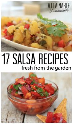 Love homemade salsa? Here's a collection of more than 15 recipes from sweet to savory. From mango salsa to recipes made with cilantro, nectarines, tomatillos, and (of course) tomatoes, you'll find plenty of garden fresh variety here!