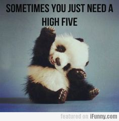 Sometimes You Just Need A High Five