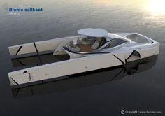 Bionic sailboat - www.buzasi.com