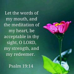"""Let the words of my mouth and the meditation of my heart Be acceptable in Your sight, O LORD, my strength and my Redeemer."" ‭‭Psalms‬ ‭19:14‬ ‭NKJV‬"