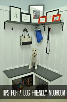 Tips for a Dog Friendly Mudroom. Love this mudroom by @Michelle Flynn Flynn Flynn @Michelle Flynn Flynn {decorandthedog}