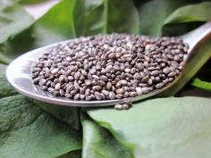 Lahodné zelené smoothie s chia semienkami - Fitshaker Smoothie, Beans, Vegetables, Food, Essen, Smoothies, Vegetable Recipes, Meals, Yemek