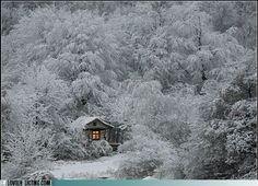 Snowy wilderness cabin