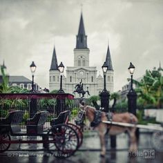 St Louis Cathedral, New Orleans Louisiana