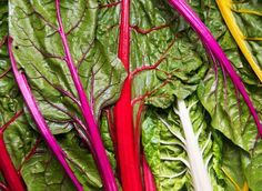 Find out which greens you should be eating for a healthy body. These greens include chard, kale, turnip greens and other high-protein leafy greens that promote healthy digestion and contain lots of essential vitamins and nutrients.