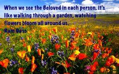 blooming flowers Blooming Flowers, Originals, Pumpkin, Garden, Outdoor, Outdoors, Pumpkins, Garten, Lawn And Garden