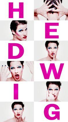 #DarrenIsHedwig 2015