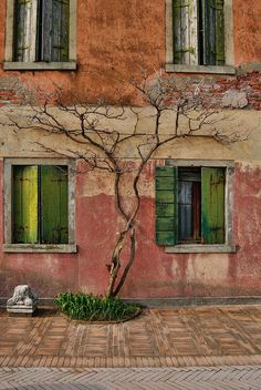 This Ivy House  - mostlyitaly:   Torcello (Veneto, Italy)...