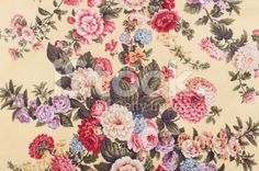 Antique Floral Fabric SB91 Close Up royalty-free stock photo