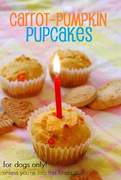 Carrot & Pumpkin Pupcakes.. for the puppies!  going to make these for Angel's birthday in a couple weeks :)