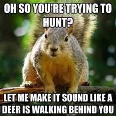nwa memes | 10 Best Hunting Memes