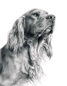 Laura Hardie Canine Artist at Stockbridge Gallery Dogs in Art