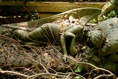 A sleeping angel. I wonder if this was a abandoned cemetery or a old estate? Posted from Urban Decay Beauty Cemetery Angels, Cemetery Statues, Cemetery Headstones, Old Cemeteries, Cemetery Art, Graveyards, Statue Ange, Urban Decay Photography, Angels Among Us