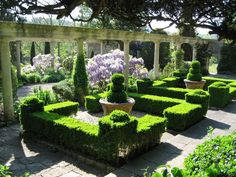 # IFORD MANOR GARDENS - topiary.