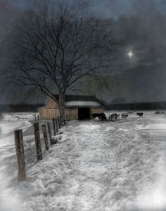 silent night - Peaceful