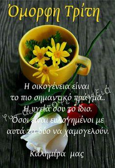 Ευχές καλημερας Beautiful Pink Roses, Good Morning Texts, Good Night Quotes, Greek Quotes, Mornings, Tuesday, Google