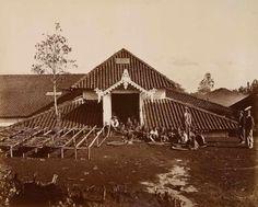 Het sorten van de theebladeren op theeon derneming Waspada bij Garoet 1894.(3324)