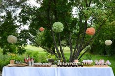 Pillow Thought: Lexi's Enchanted Garden 2nd Birthday Party