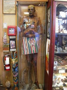 Ye Olde Curiosity Shop on the waterfront in Seattle, WA specializes in things that are offbeat and weird. A must see! #scenicwa